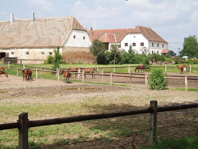 Horse Farm – Lechovice